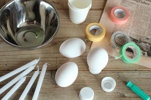kaiga_eggcandle_2.