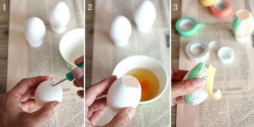 kaiga_eggcandle_3.