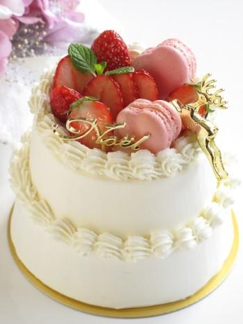星口金-ショートケーキのデコレーション